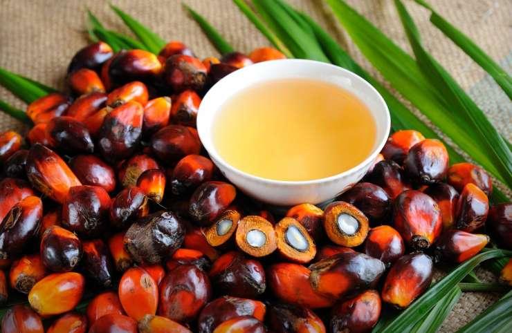 Huile de palmiste : un remède efficace pour les cheveux secs
